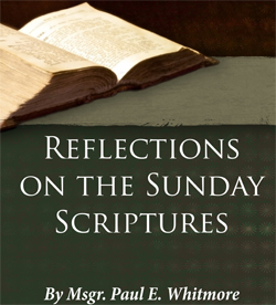 Reflections on Sunday Scripture